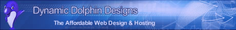 Affordable Web Design by Dynamic Dolphin Designs
